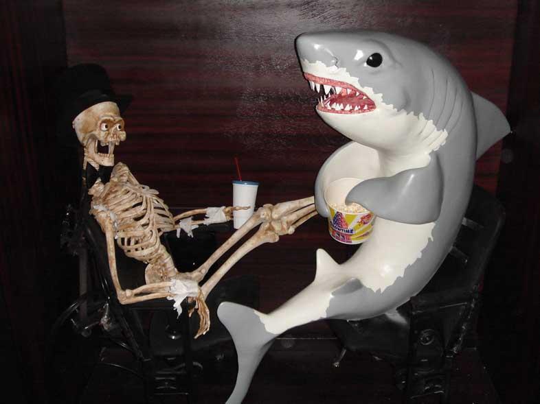 shark-and-skeleton